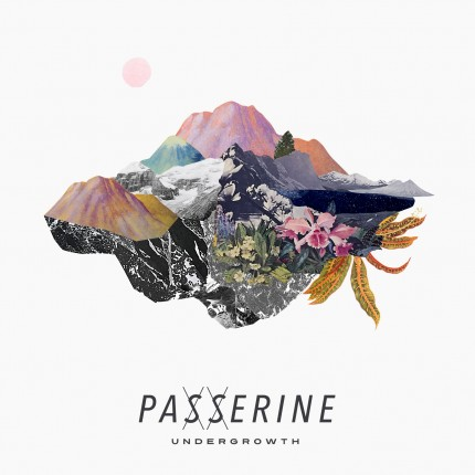 passerine-undergrowth_artwork
